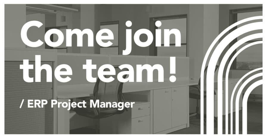 ERP Project Manager